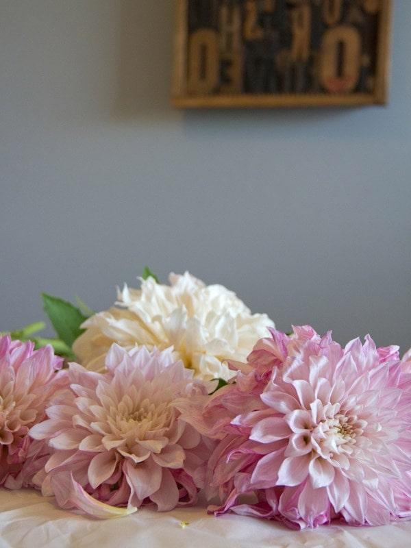dahlia-bouquet2