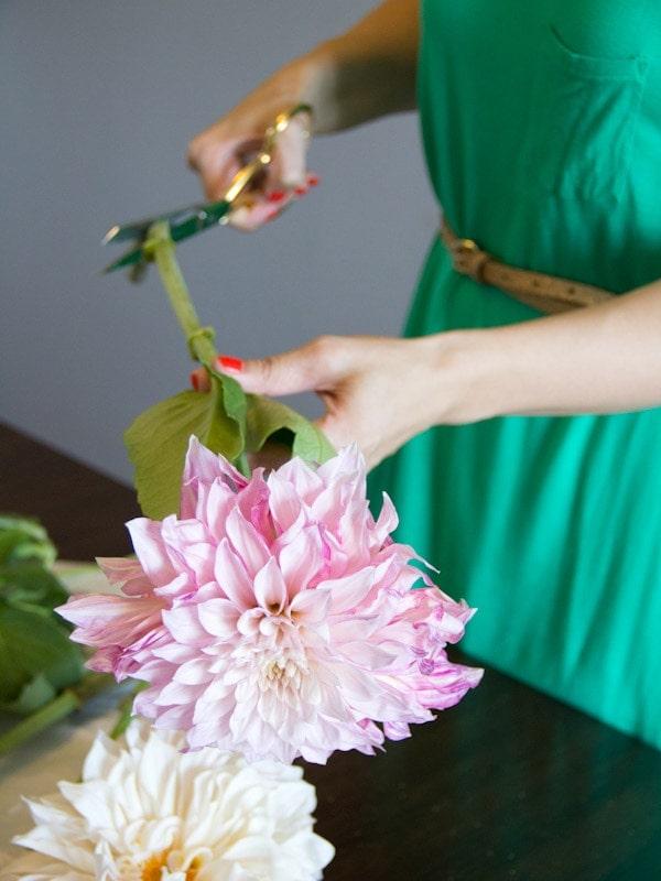 dahlia-bouquet5