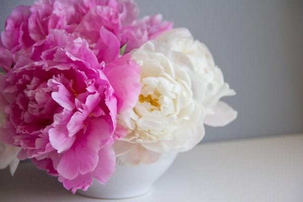 peony-bouquet1