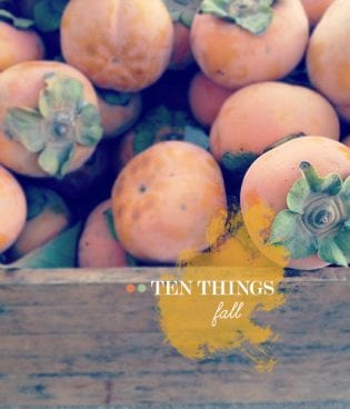 Ten Things: Fall thumbnail