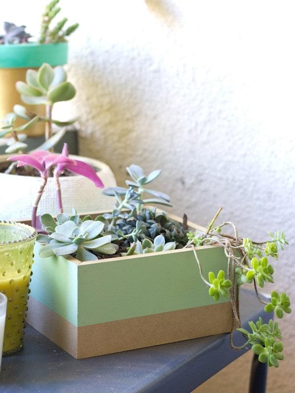 planter10