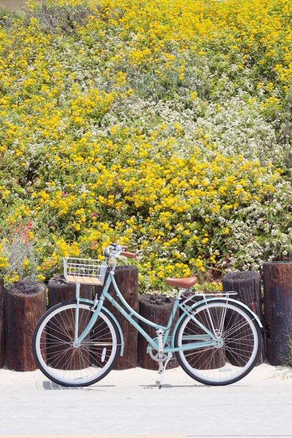 Manhattan Beach Bike Path