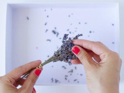 DIY Dried Lavender Sachet