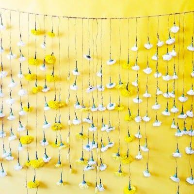Yellow Flower Backdrop