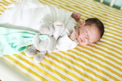 Newborn Photo Shoot