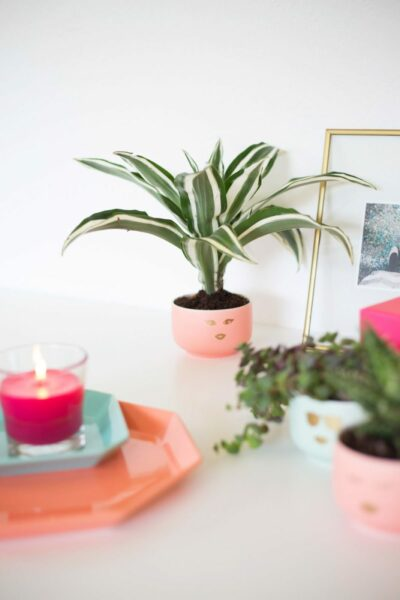 DIY Girly Face Planters