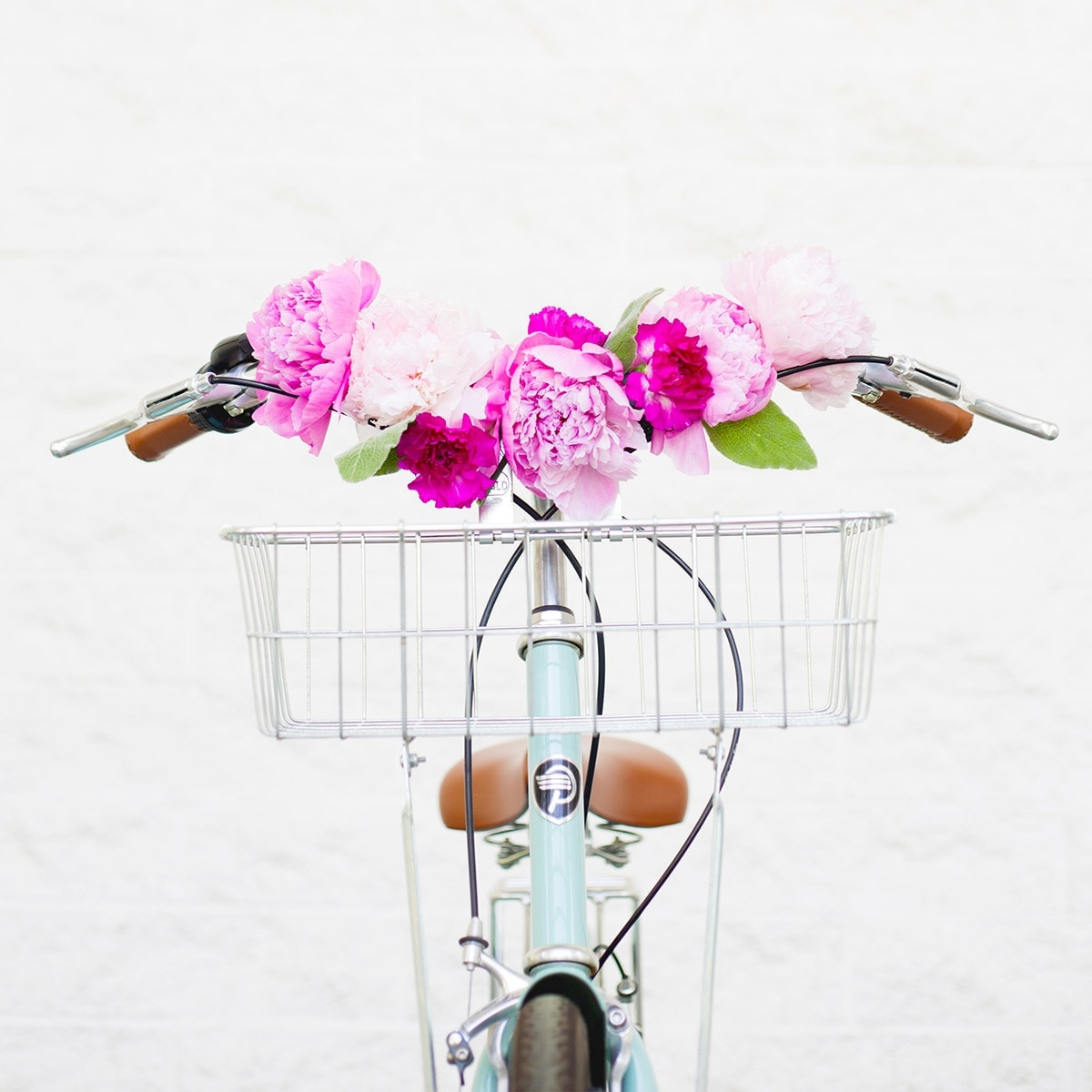 Bicycle Flower Art Print