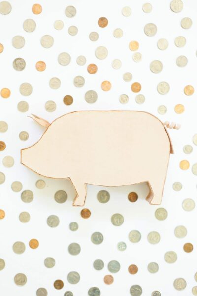 DIY Leather Piggy Bank