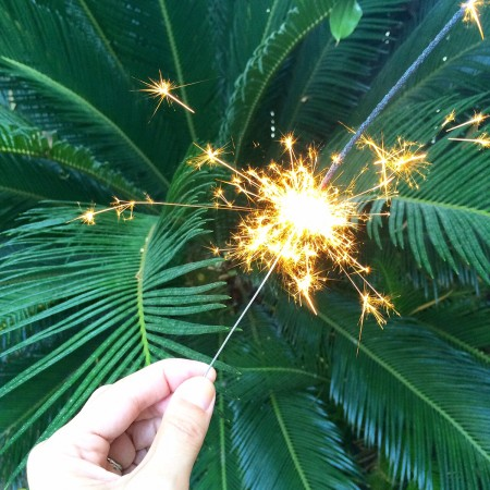 Sparkler and Palms