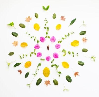 Botanical Mandala