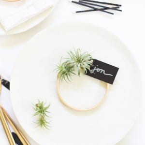 DIY Air Plant Wreath Place Cards thumbnail