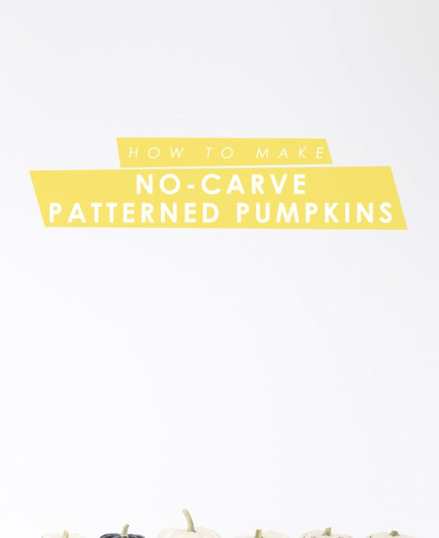 DIY Paint Pen Pattern No-Carve Pumpkins thumbnail