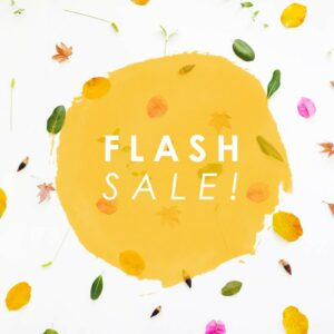 Workshop Flash Sale! thumbnail