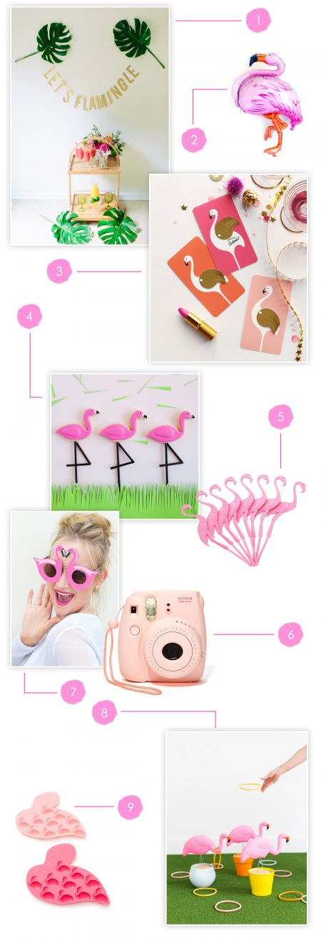 Let's Flamingle Party