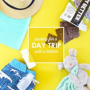 How to Pack for Day Trips with a Toddler thumbnail