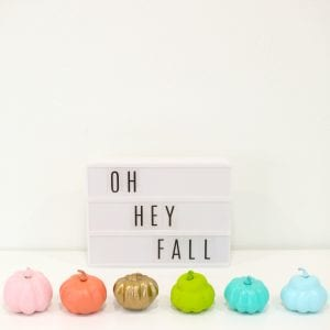 DIY Painted Mini Pumpkins thumbnail