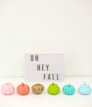 DIY Painted Mini Pumpkins