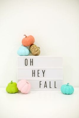 DIY Painted Mini Pumpkins