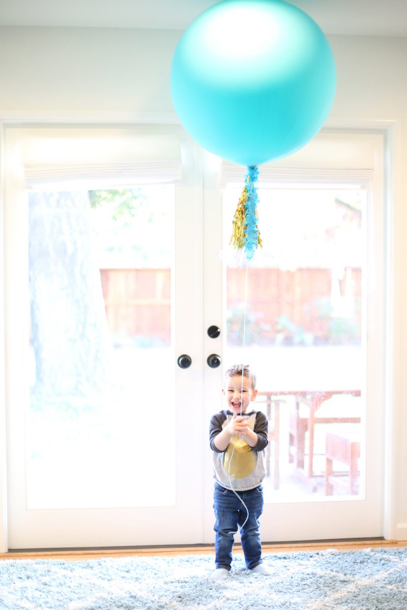 Simple Two Year Old Birthday Party