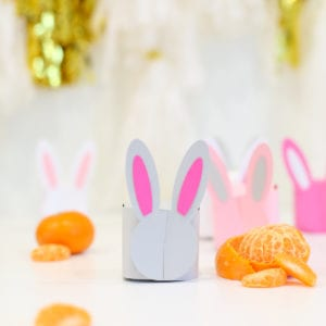 DIY Printable Bunny Box thumbnail