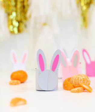 DIY Printable Bunny Box
