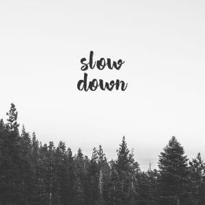 Slow Down // 1 thumbnail