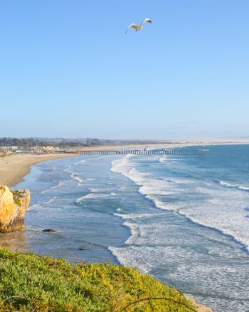 Best stops for kids on a road trip down the California coast