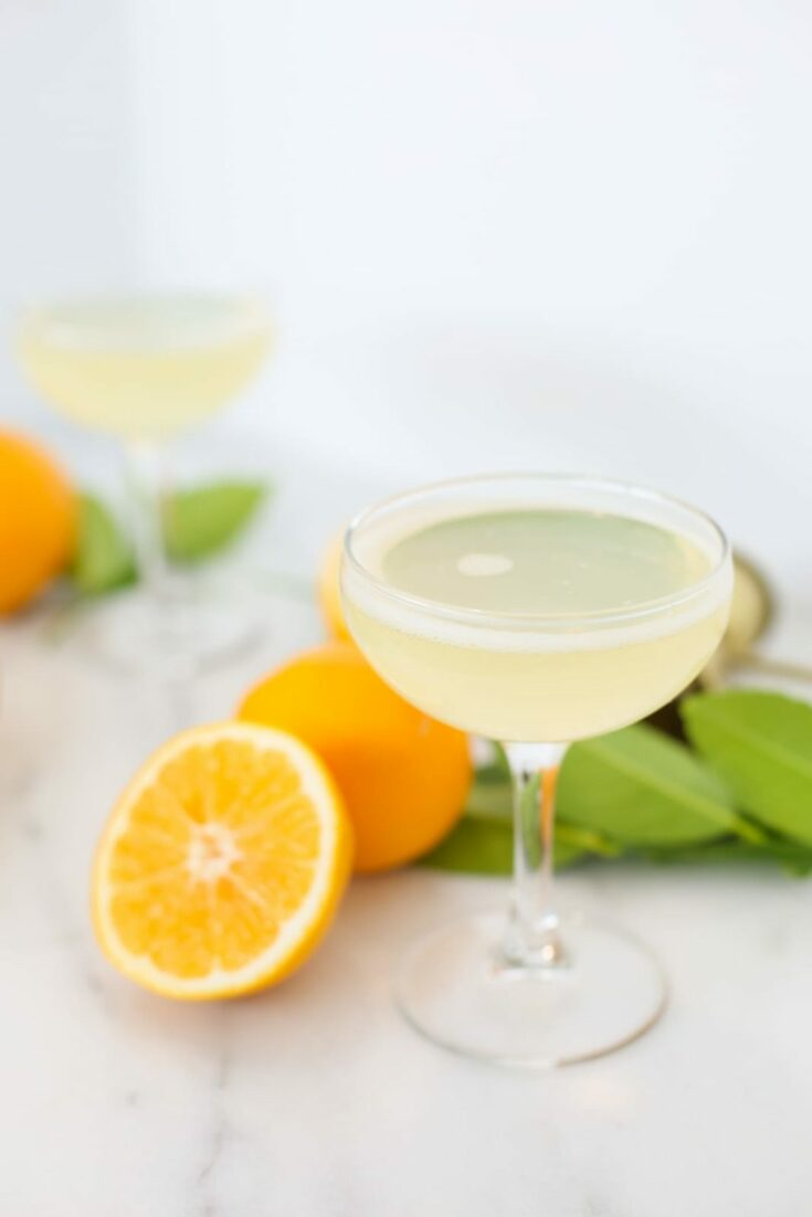 how to make a bees knees cocktail