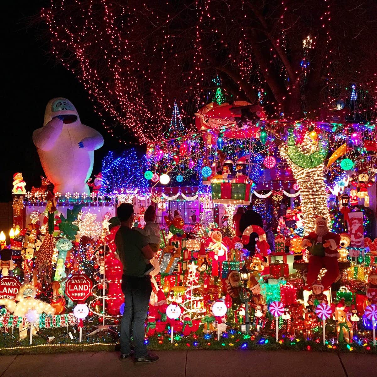 Dad and son with Christmas light display