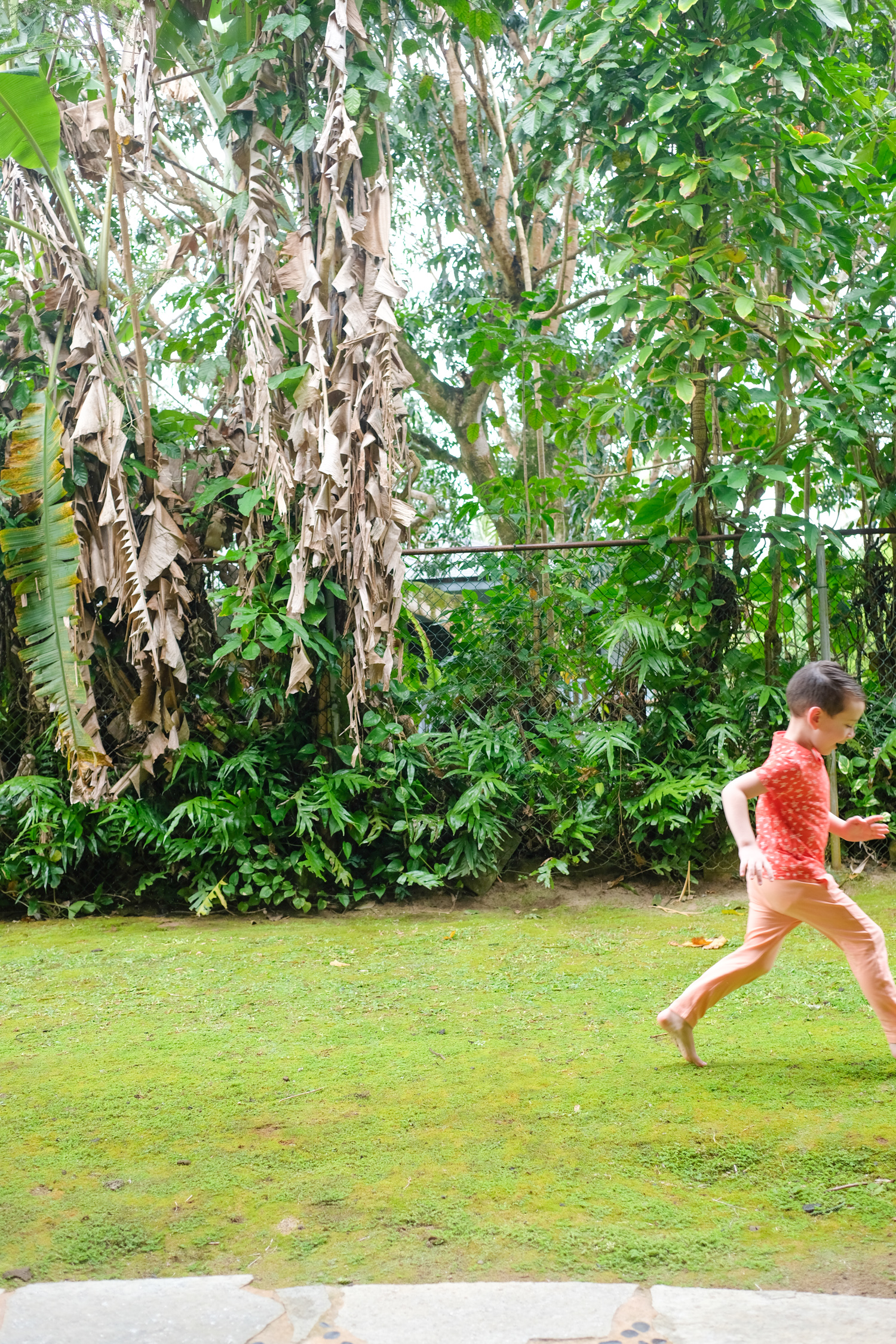 Little boy running in Kauai