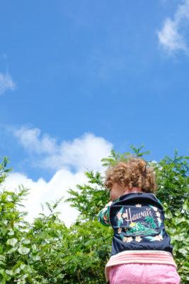 Child in Hawaii jacket