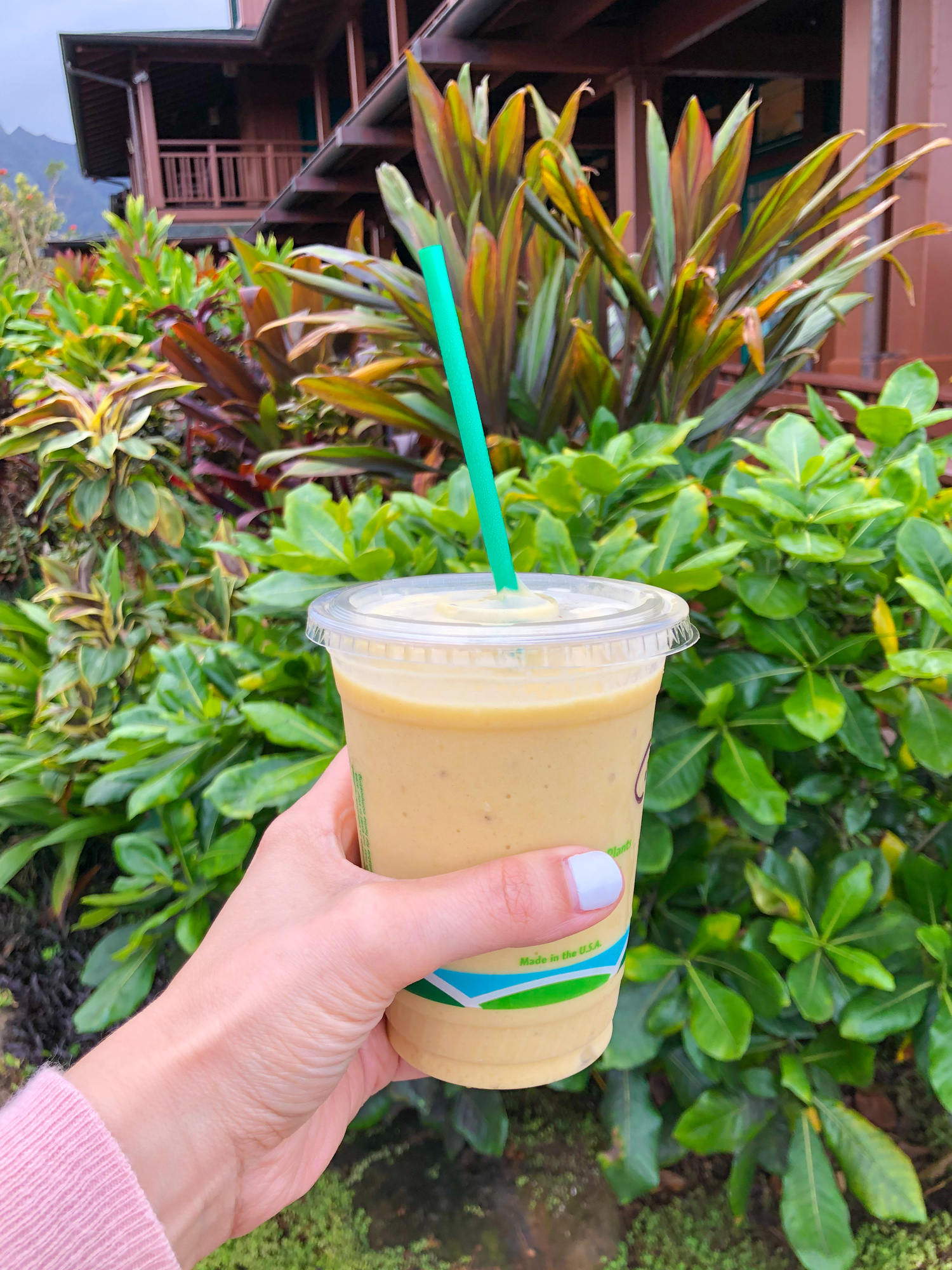Hand holding smoothie from Hanalei Bread Company in Kauai