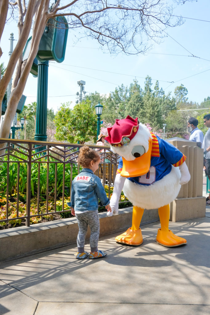 Best Secret Disneyland Tips and Hacks