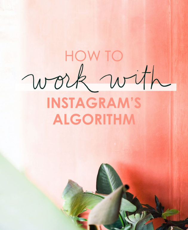 5 Ways to Work With the Instagram Algorithm thumbnail