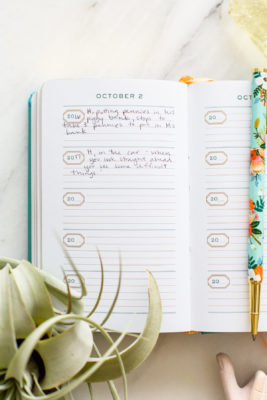 Brilliant Parenting Hack for a One Line a Day Journal