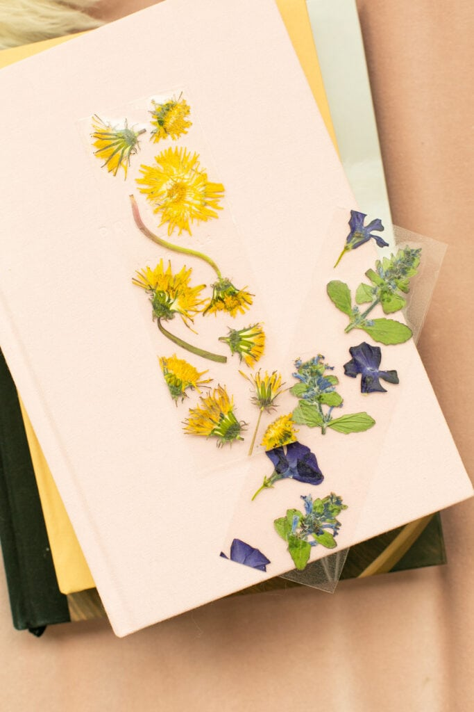 How to make bookmarks with pressed flowers