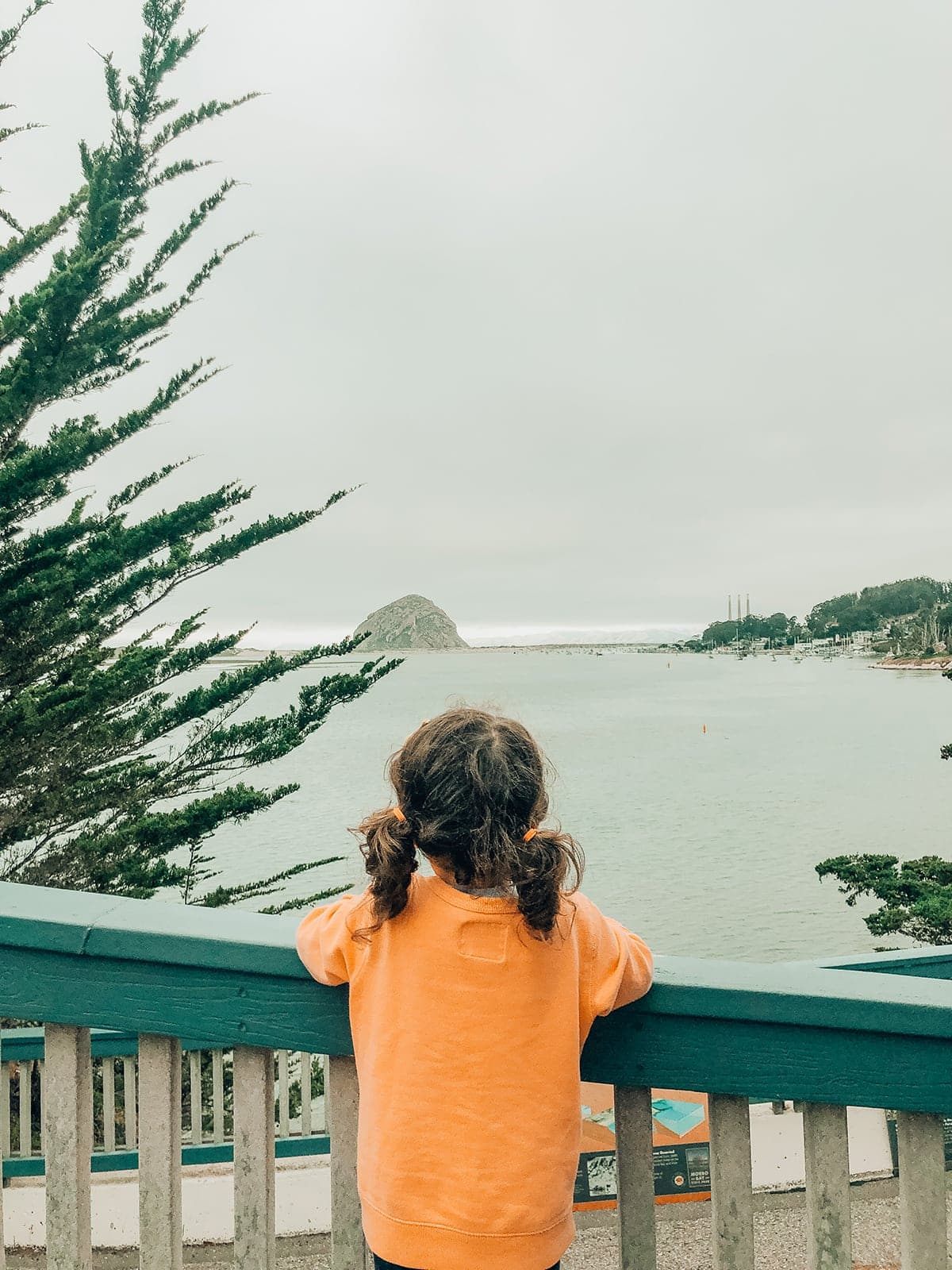 things to do in Morro Bay
