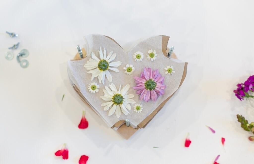 flowers on a heart shaped diy flower press