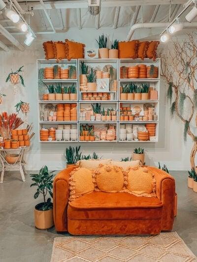 pigment shop in san diego